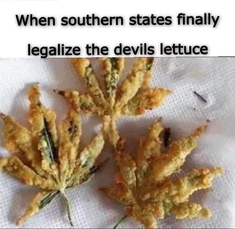 Name:  devils lettuce.jpg Views: 737 Size:  53.5 KB