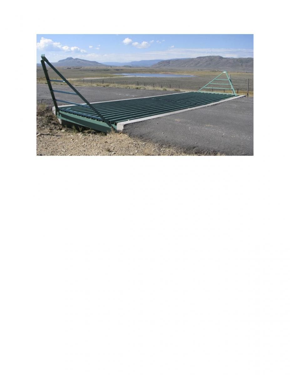 Name:  cattle guard.jpg Views: 758 Size:  59.2 KB